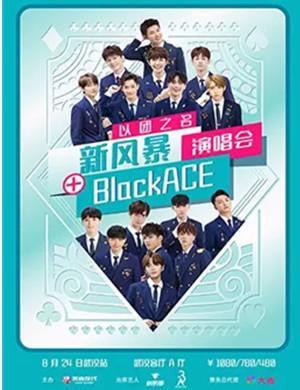 2019以团之名·新风暴&BlackACE 巡回演唱会-武汉站