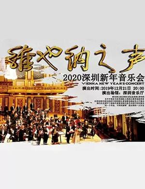 维也纳之声——2020新年交响音乐会-深圳站