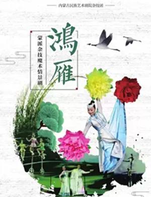 2019杂技魔术情景剧鸿雁长沙站