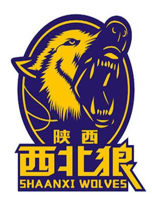 2019男子篮球联赛半决赛渭南站
