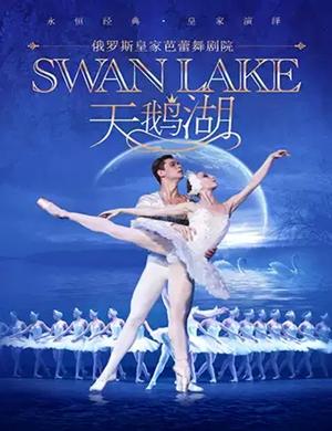 芭蕾舞剧天鹅湖天津站