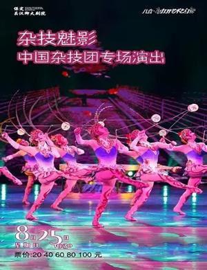 中国杂技团保定专场