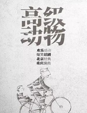 2020话剧《高级动物》重庆站