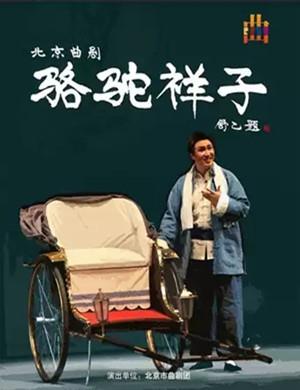 曲剧骆驼祥子北京站