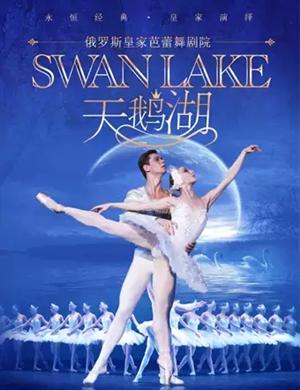 芭蕾舞劇天鵝湖濟南站