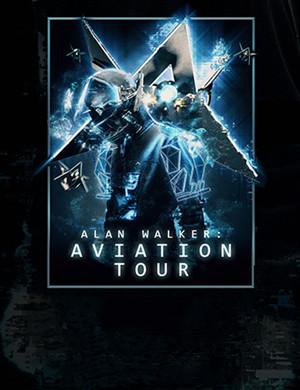Alan Walker上海演唱会