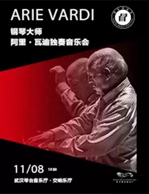 阿里瓦迪武汉音乐会