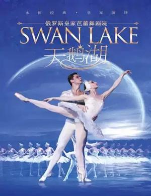芭蕾舞剧天鹅湖沈阳站