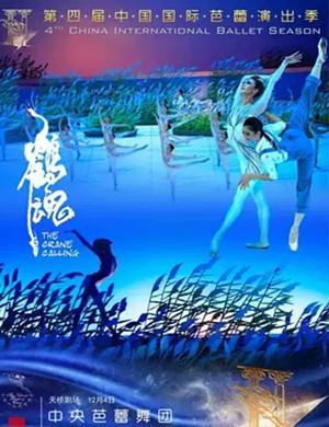 芭蕾舞劇鶴魂北京站