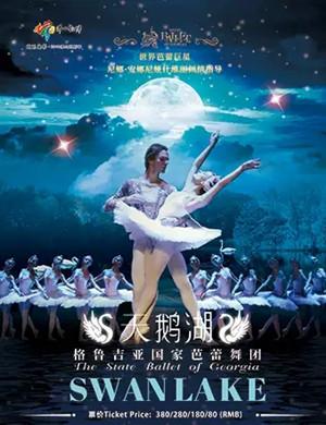 芭蕾舞劇天鵝湖佛山站