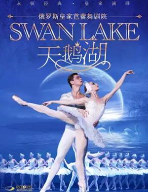 芭蕾舞天鵝湖上海站