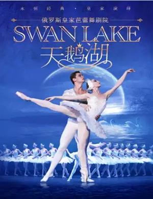 芭蕾舞劇天鵝湖長沙站