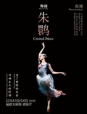 舞劇朱鹮福州站