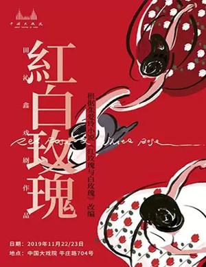 話劇紅白玫瑰上海站
