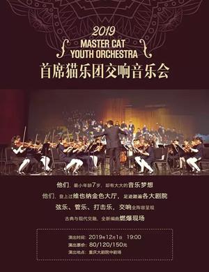 首席貓樂團重慶音樂會