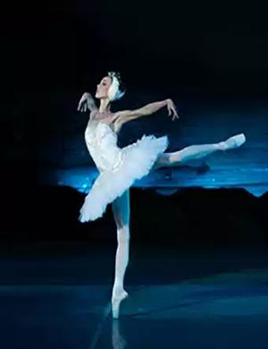 芭蕾舞劇天鵝湖呼和浩特站