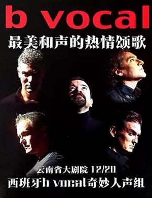 b vocal奇妙人声组昆明音乐会