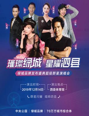 2019齐秦王心凌宿州群星演唱会