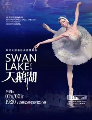 芭蕾舞剧天鹅湖金华站