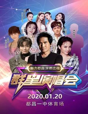 2020齐秦詹雯婷许飞九江群星演唱会